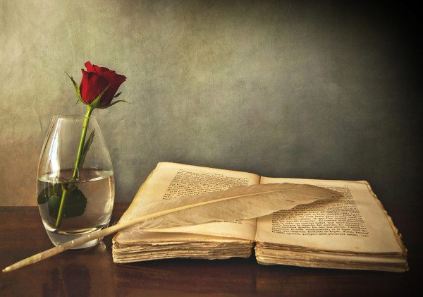 open old book, a rose in a vase and a feather