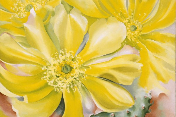 O_Keeffe__Georgia_Yellow_Cactus